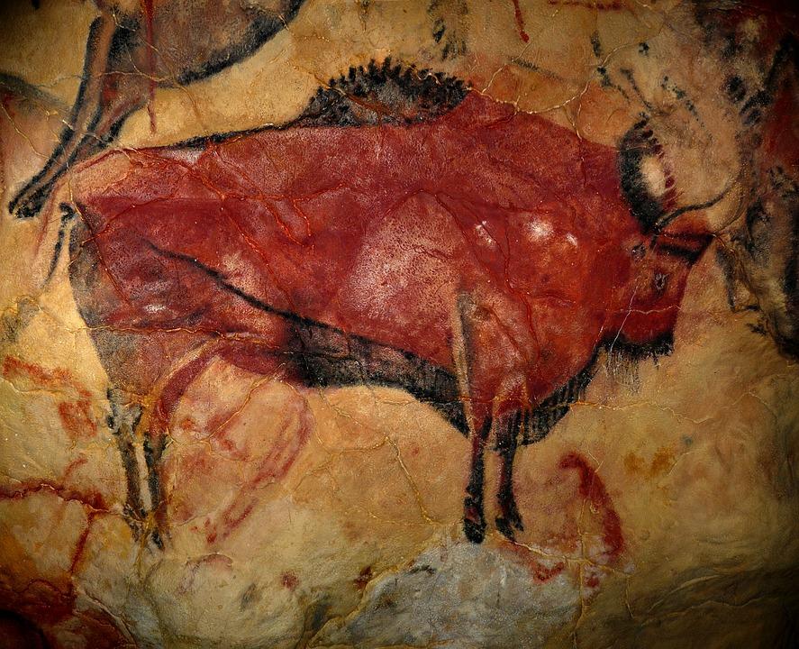 bison-1171794_960_720.jpg